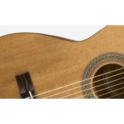 "Cuerda de Guitarra Eléctrica Rotosound 10"""